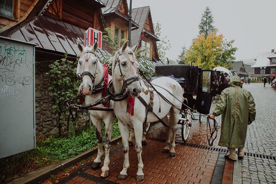 Ola i Matt - polsko-angielski ślub, że HEJ! Zakopane 50